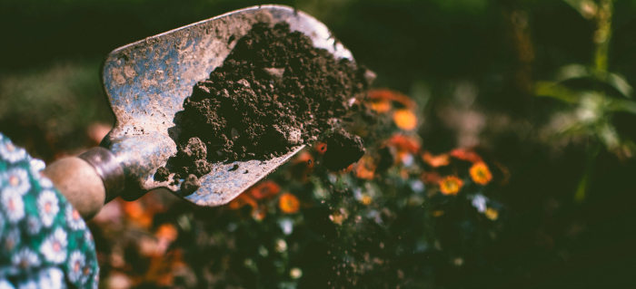 The Parable of Good Soils
